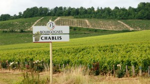 Why do Sommeliers love Chablis