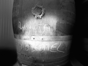 Moscatel Used Barrels