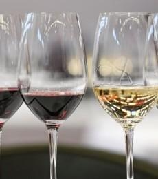 Consommation de vin en France : quelles sont les grandes tendances ?